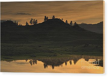 Wood Print featuring the photograph Sunrise Behind A Yellowstone Ridge by Bill Gabbert