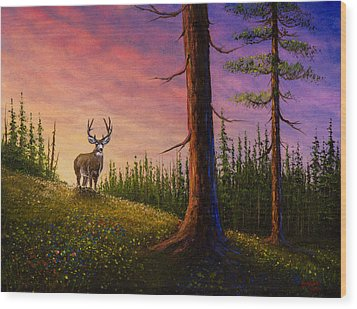 Sunrise Buck Wood Print by C Steele