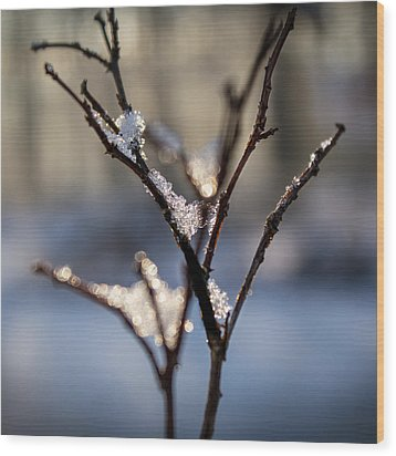 Wood Print featuring the photograph Sunrise Crystals by Glenn DiPaola