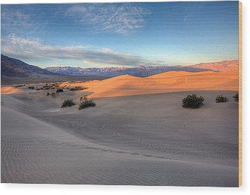 Sunrise Dunes Wood Print by Peter Tellone