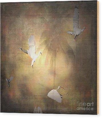 Sunrise Flight Wood Print by Irma BACKELANT GALLERIES