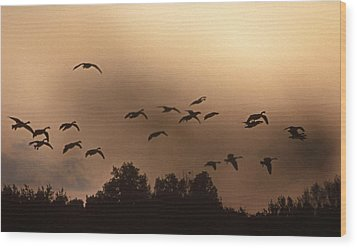 Sunrise Fog And Incoming Wood Print by Skip Willits