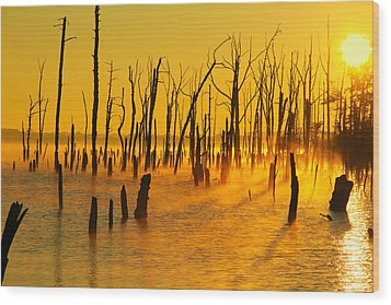 Sunrise Fog Shadows Wood Print by Roger Becker