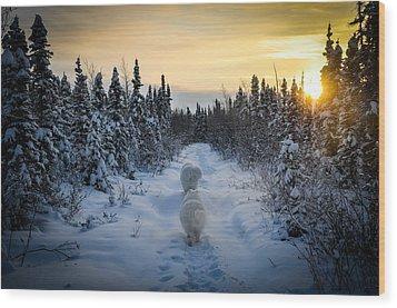 Sunrise Hike Wood Print