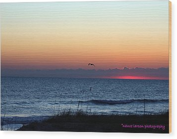 Sunrise In Florida Wood Print