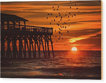 Sunrise In Myrtle Beach With Birds Flying Around The Pier Wood Print by Vizual Studio
