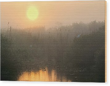 Sunrise In The Everglades Wood Print by Rudy Umans