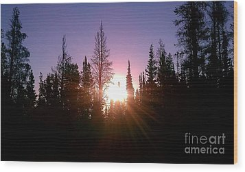 Sunrise In The Forest Wood Print by Chris Tarpening