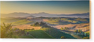 A Golden Morning In Tuscany Wood Print