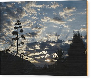 Wood Print featuring the photograph Sunrise by Janina  Suuronen