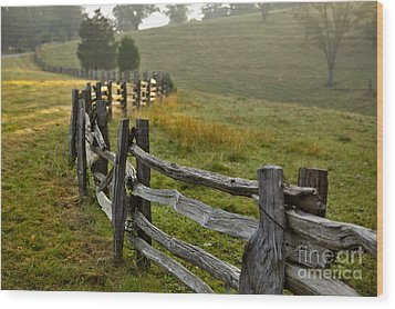 Sunrise Meadow - Blue Ridge Parkway I Wood Print by Dan Carmichael