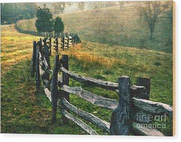 Sunrise Meadow - Blue Ridge Parkway II Wood Print by Dan Carmichael