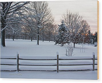 Wood Print featuring the photograph Sunrise On A Snowy Morning by Ann Murphy