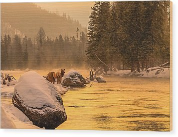 Wood Print featuring the photograph Sunrise On Madison River by Yeates Photography