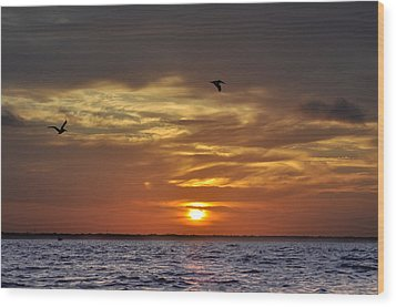 Sunrise On Tampa Bay Wood Print by Bill Cannon