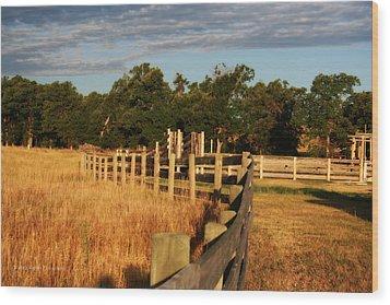 Sunrise On The Fence Wood Print