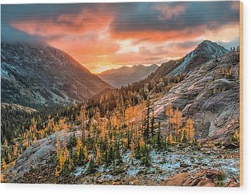 Sunrise On The Larches Wood Print