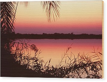 Sunrise On The Okavango Delta Wood Print by Stefan Carpenter