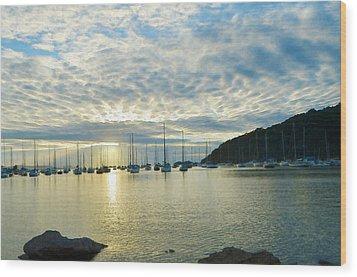 Sunrise On The Sea Wood Print by Anton Joseph