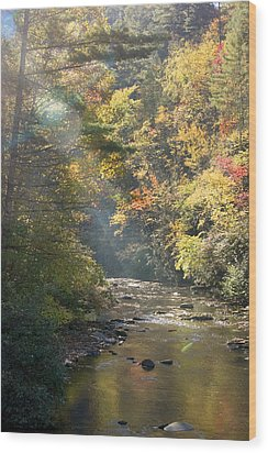 Wood Print featuring the photograph Sunrise On The Telico River by Robert Camp