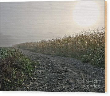 Sunrise Over Country Road Wood Print by Olivier Le Queinec