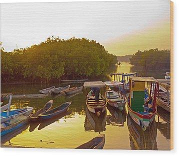 Sunrise Over Gambian Creek Wood Print by Tony Murtagh