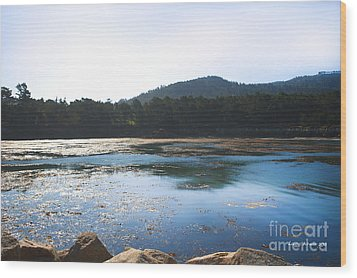 Sunrise Over Whaler's Cove At Point Lobos California Wood Print by Artist and Photographer Laura Wrede