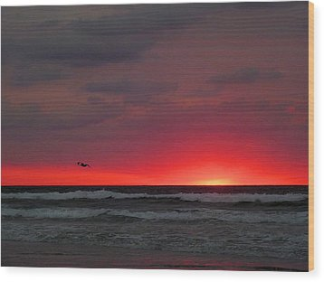 Sunrise Pink Wood Print by JC Findley