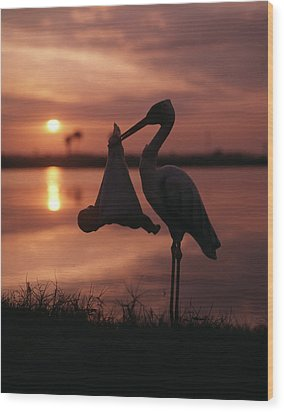 Sunrise Silhouette Of Stork Carrying Wood Print