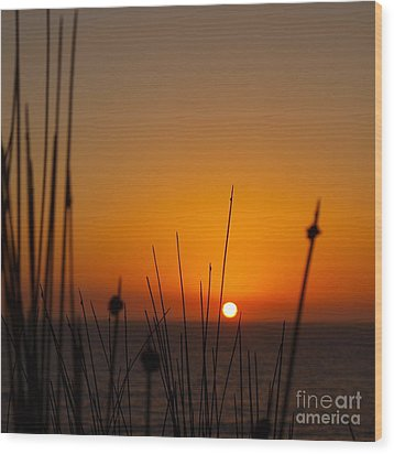 Wood Print featuring the photograph Sunrise Silhouette by Trena Mara