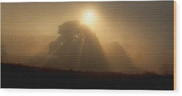 Wood Print featuring the photograph Sunrise Through The Fog by Judi Baker
