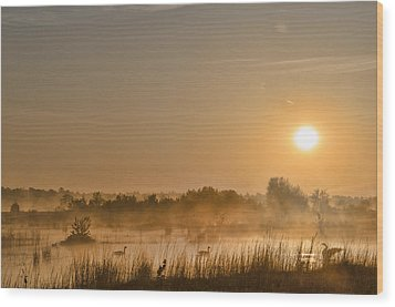 Sunrise With The Geese Wood Print