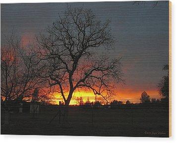 Sunset 02 18 13 Wood Print by Joyce Dickens