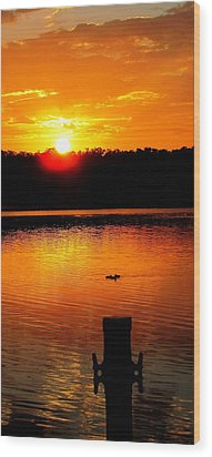 Sunset And Ducks Wood Print by Will Boutin Photos
