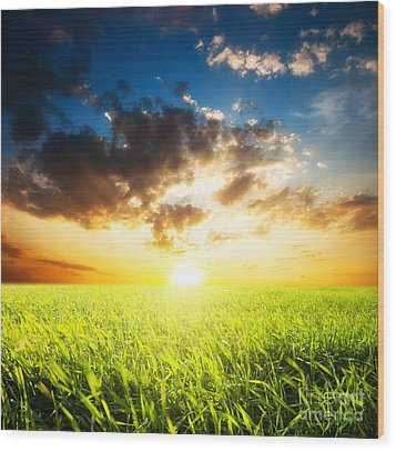 Sunset And Field Of Grass Wood Print by Boon Mee