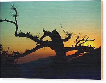 Sunset Angeles National Forest Wood Print