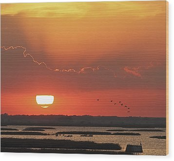 Sunset At Cheyenne Bottoms Wood Print by Rob Graham