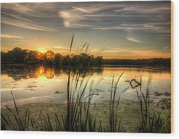 Sunset At Cootes Bay Wood Print by Craig Brown