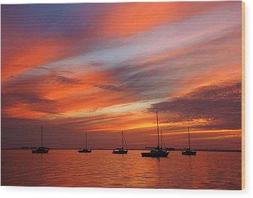 Sunset At Crystal Beach Wood Print by Daniel Woodrum