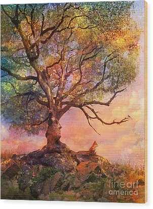 Sunset At Fox Mountain Wood Print by Aimee Stewart