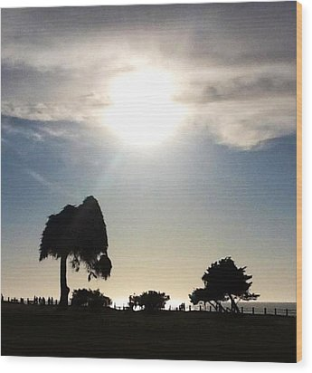 Wood Print featuring the photograph Sunset At La Jolla by Susan Garren