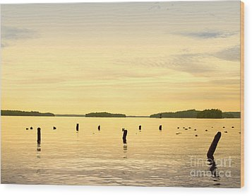 Wood Print featuring the photograph Sunset At Lake Muskoka by Les Palenik
