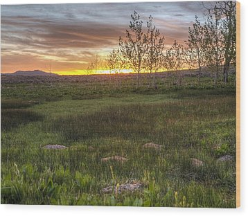 Sunset At Sunflower Flats Wood Print