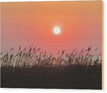 Wood Print featuring the photograph Sunset At The Beach by Cynthia Guinn