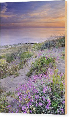 Sunset At The Beach  Flowers On The Sand Wood Print by Guido Montanes Castillo