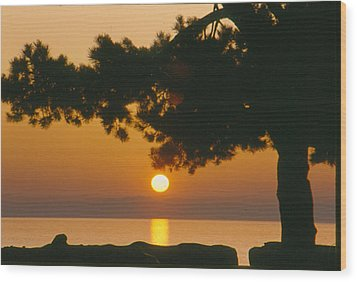 Sunset At The Beach Wood Print by Michael Dohnalek