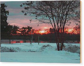 Sunset At The Park Wood Print by Carolyn Ricks