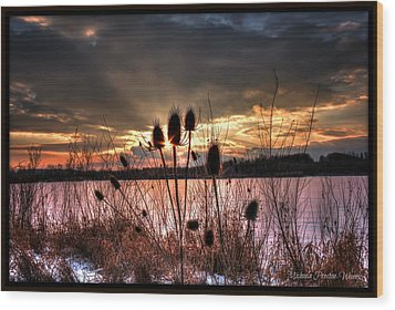 Wood Print featuring the photograph Sunset At The Pond 4 by Michaela Preston