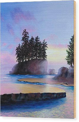Sunset At Tongue Point Wood Print by Shelley Irish