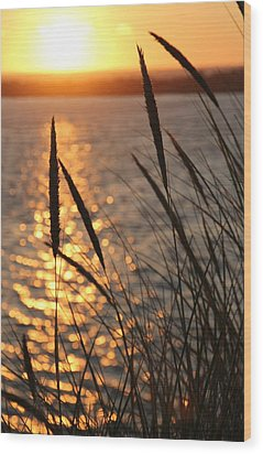 Wood Print featuring the photograph Sunset Beach by Athena Mckinzie